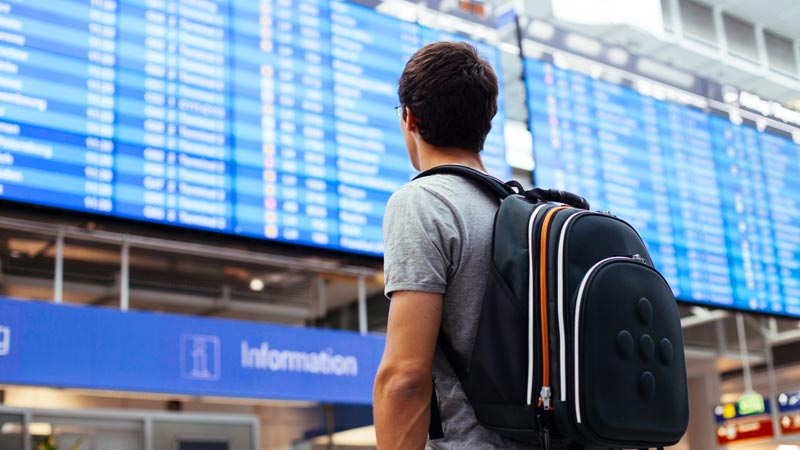 Travel Abroad Programs